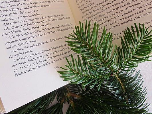 Mit dem richtigen Buch als Geschenk liegt man zu Weihnachten garantiert richtig