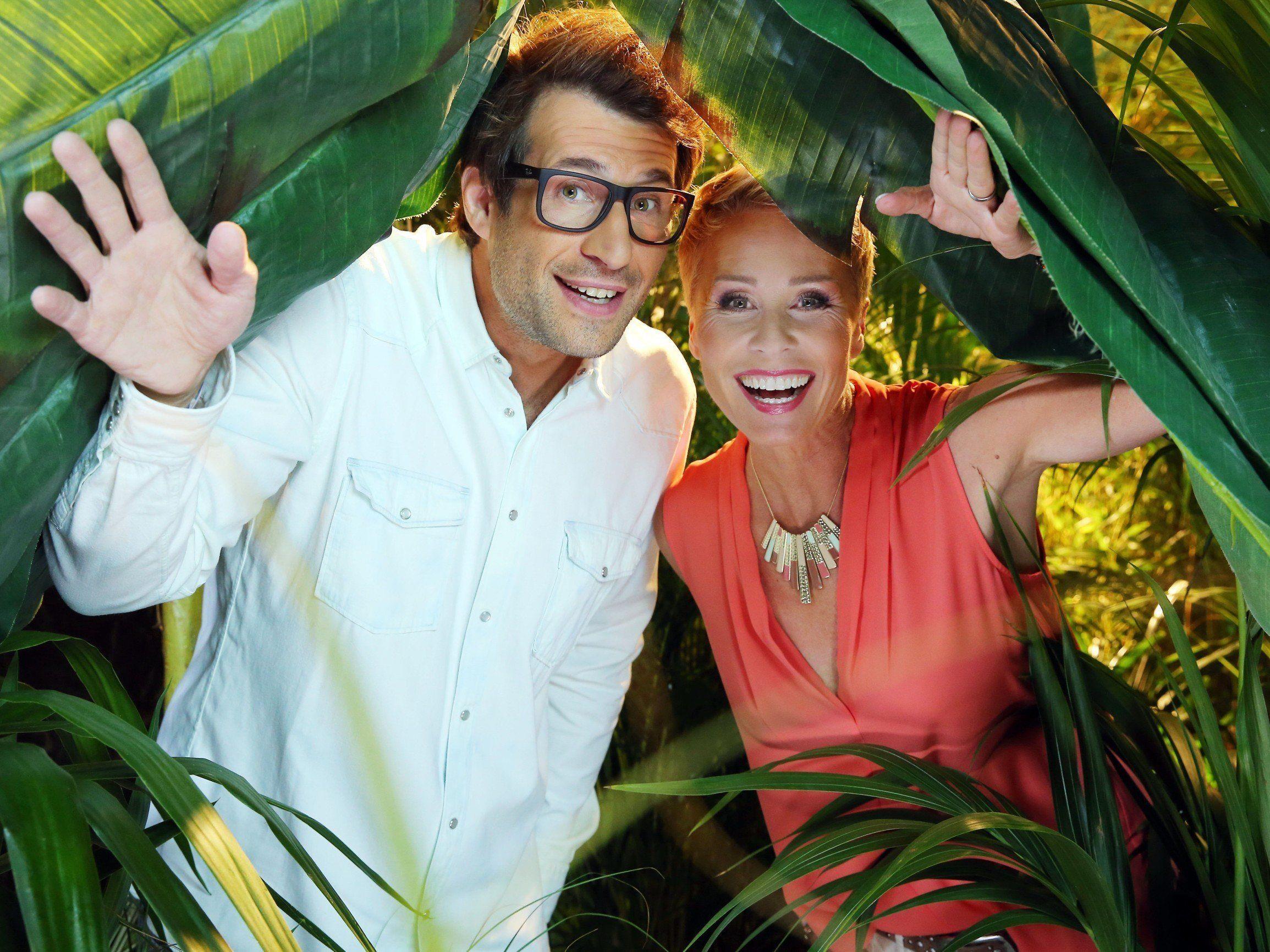 Am 13. Jänner startet das Dschungelcamp 2017 auf RTL.