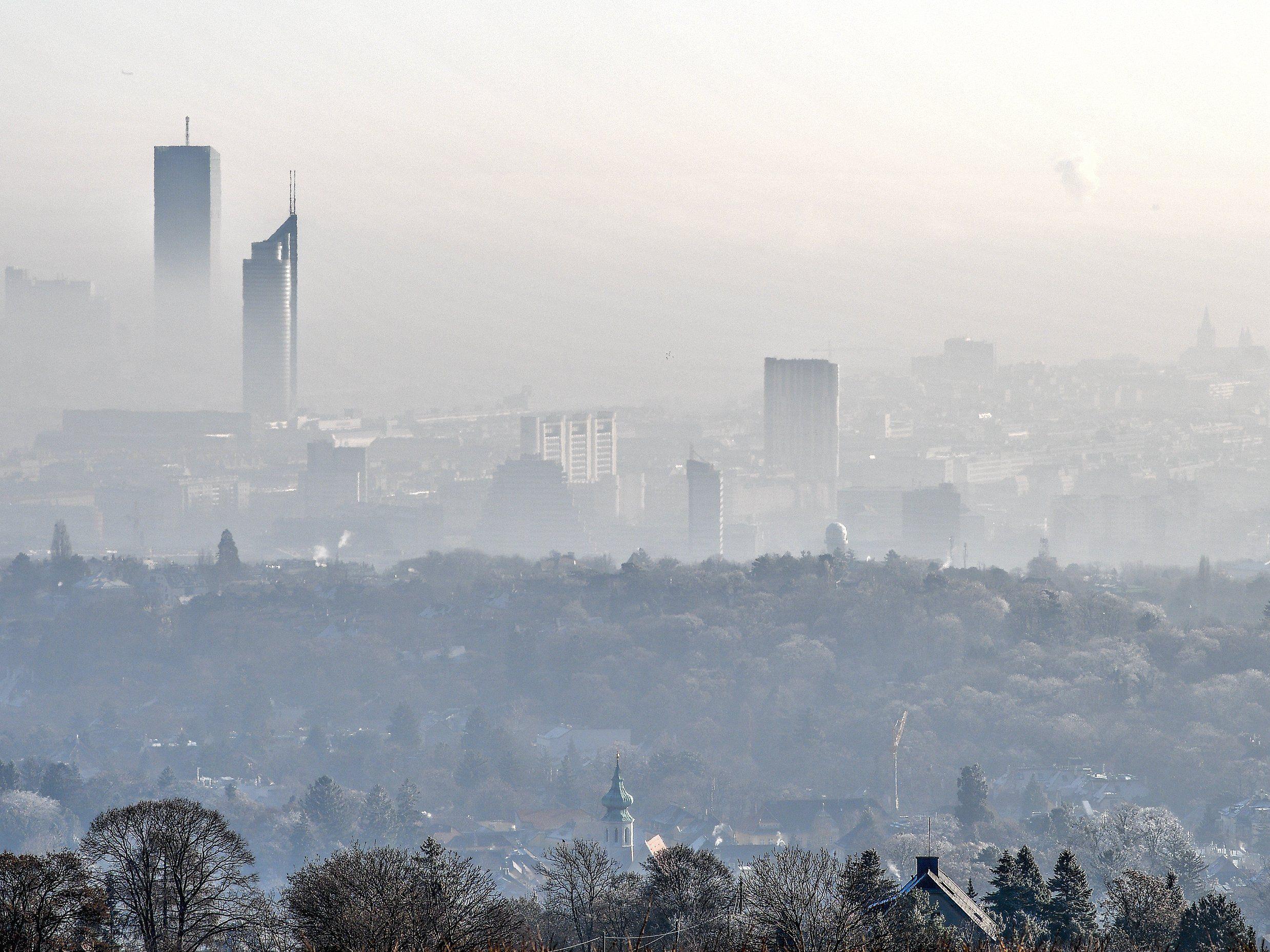 In Wien wird's diese Woche kalt und neblig.