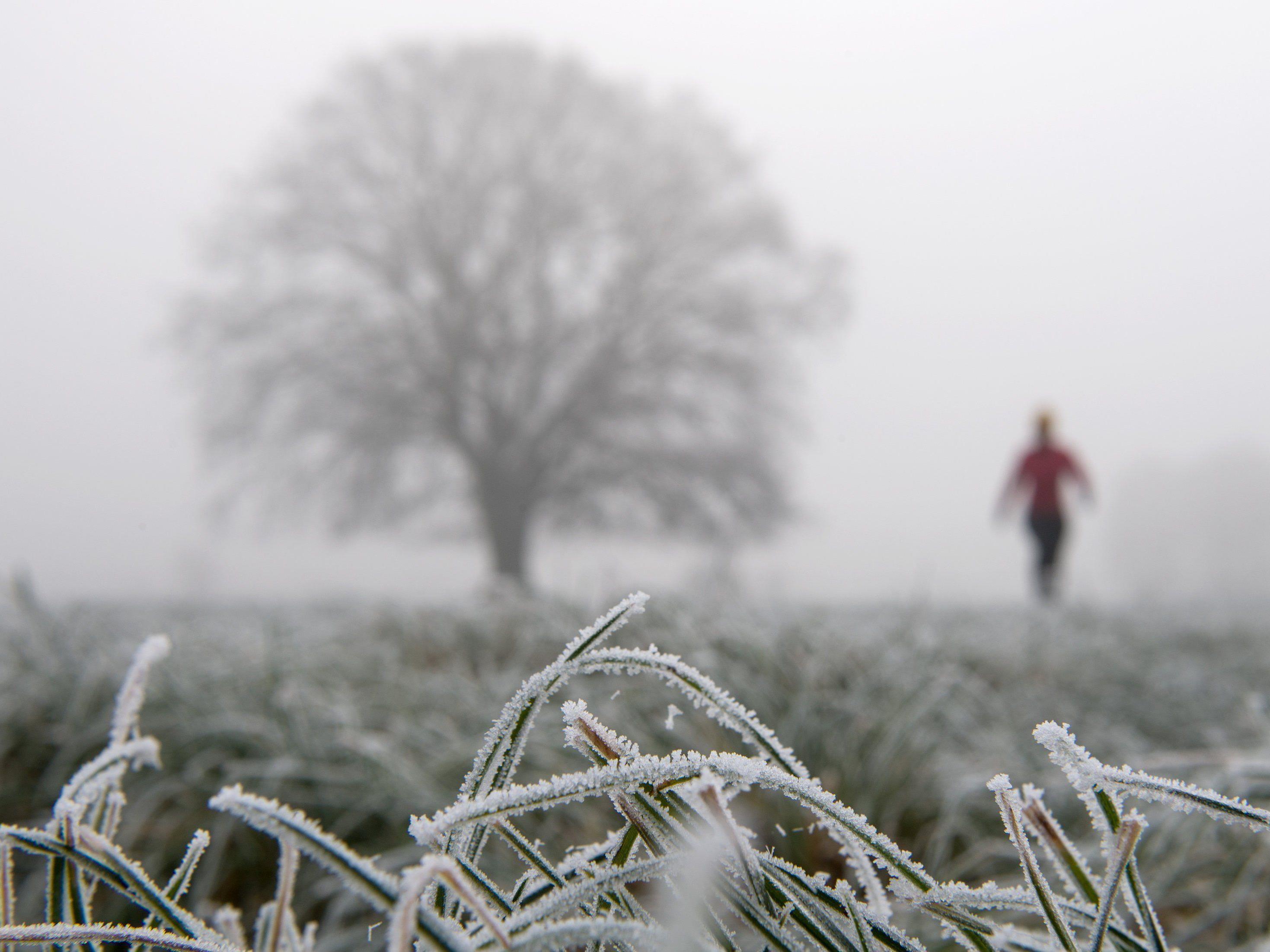 Mit der Kältewelle steigt der Strombedarf in Österreich.