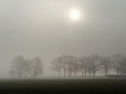 Am mildesten bleibt es in den nebelfreien Regionen