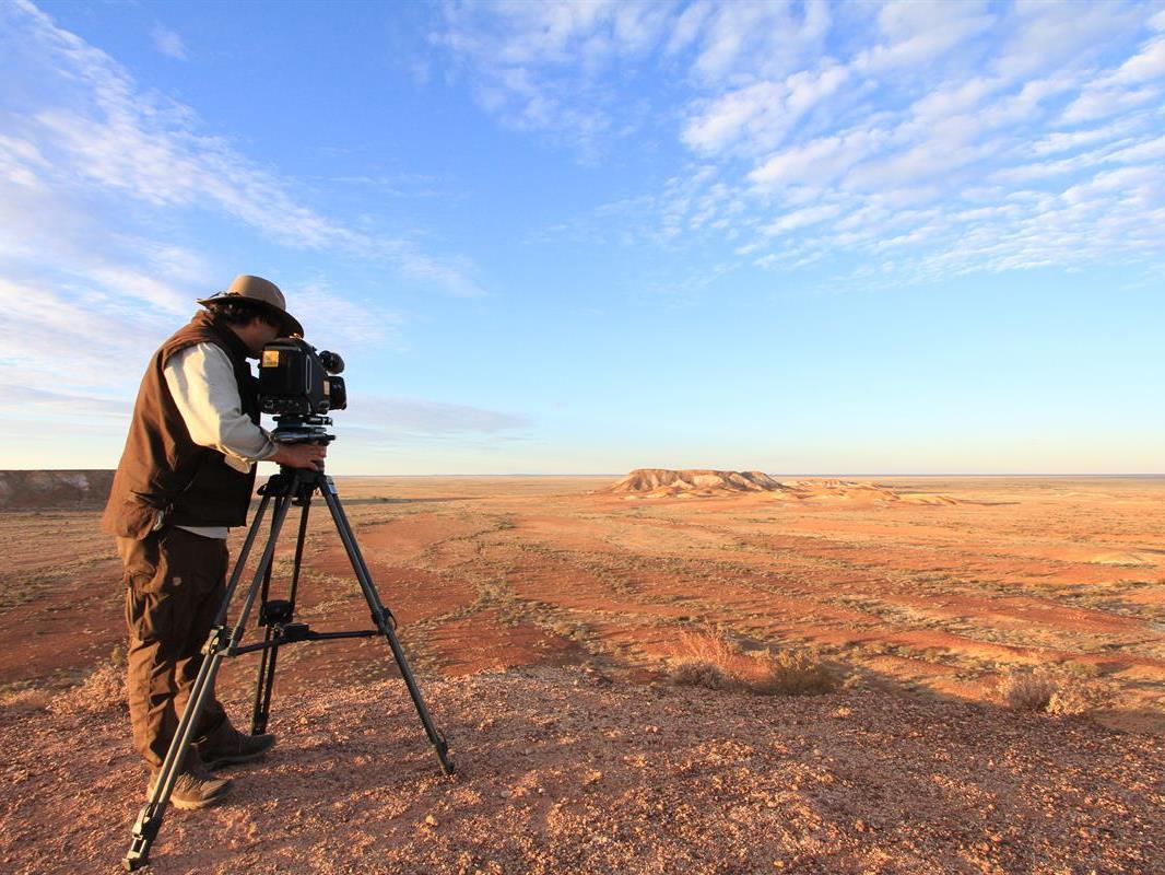 Das wilde Australien entdecken.