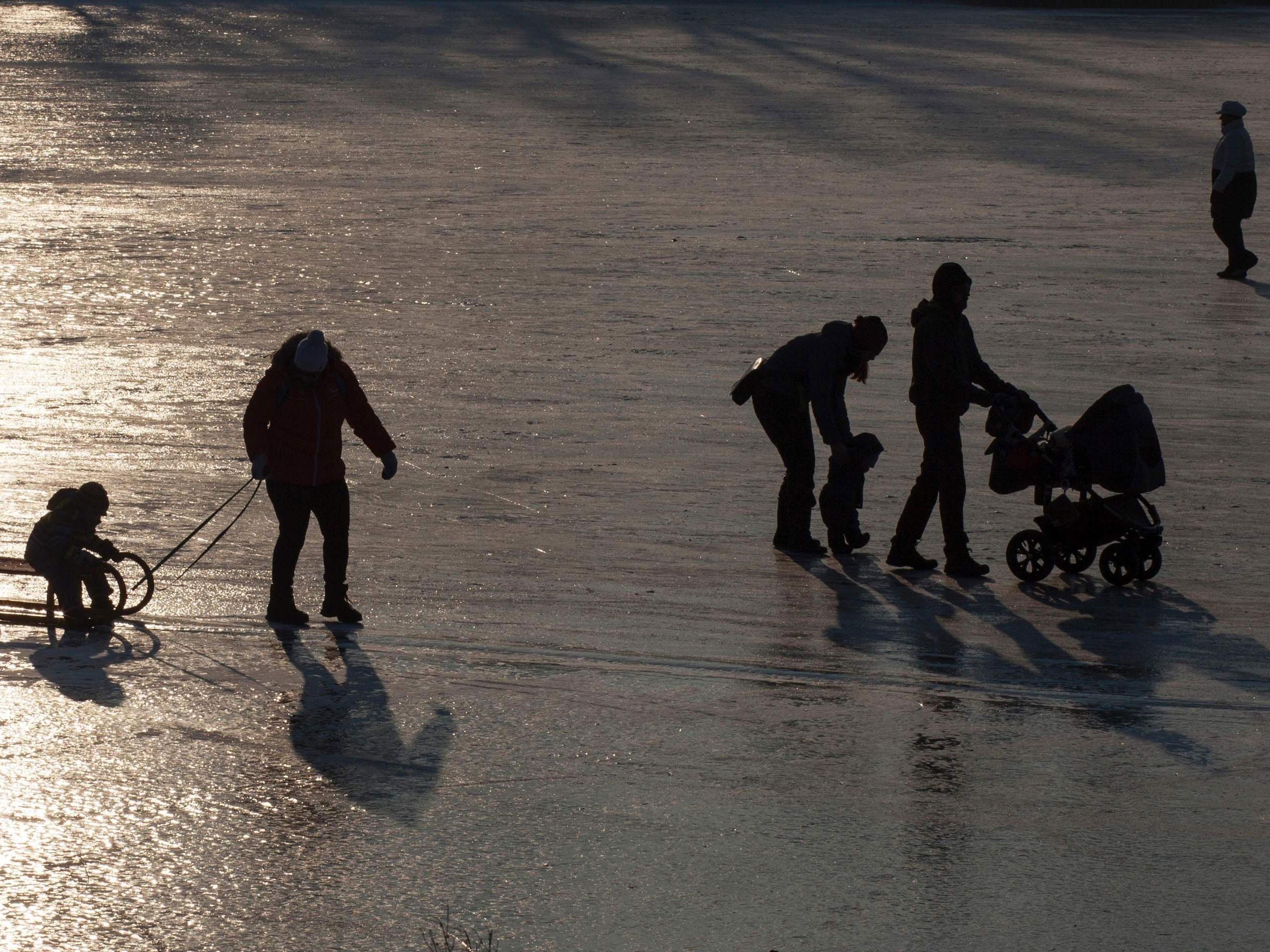 Eislaufende auf der Alten Donau - sogar mit Schlitten und Kinderwagen