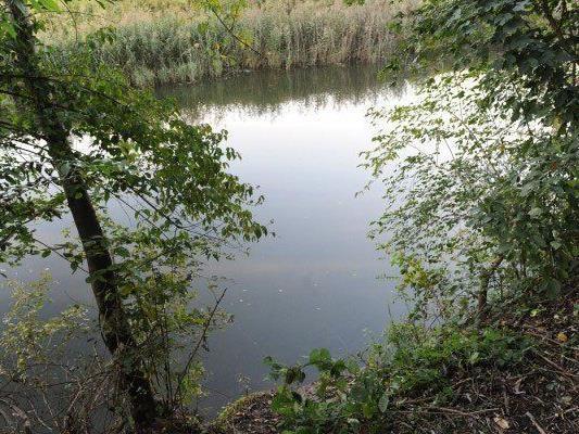 Toter in Pkw in NÖ Teich: Kein Fremdverschulden