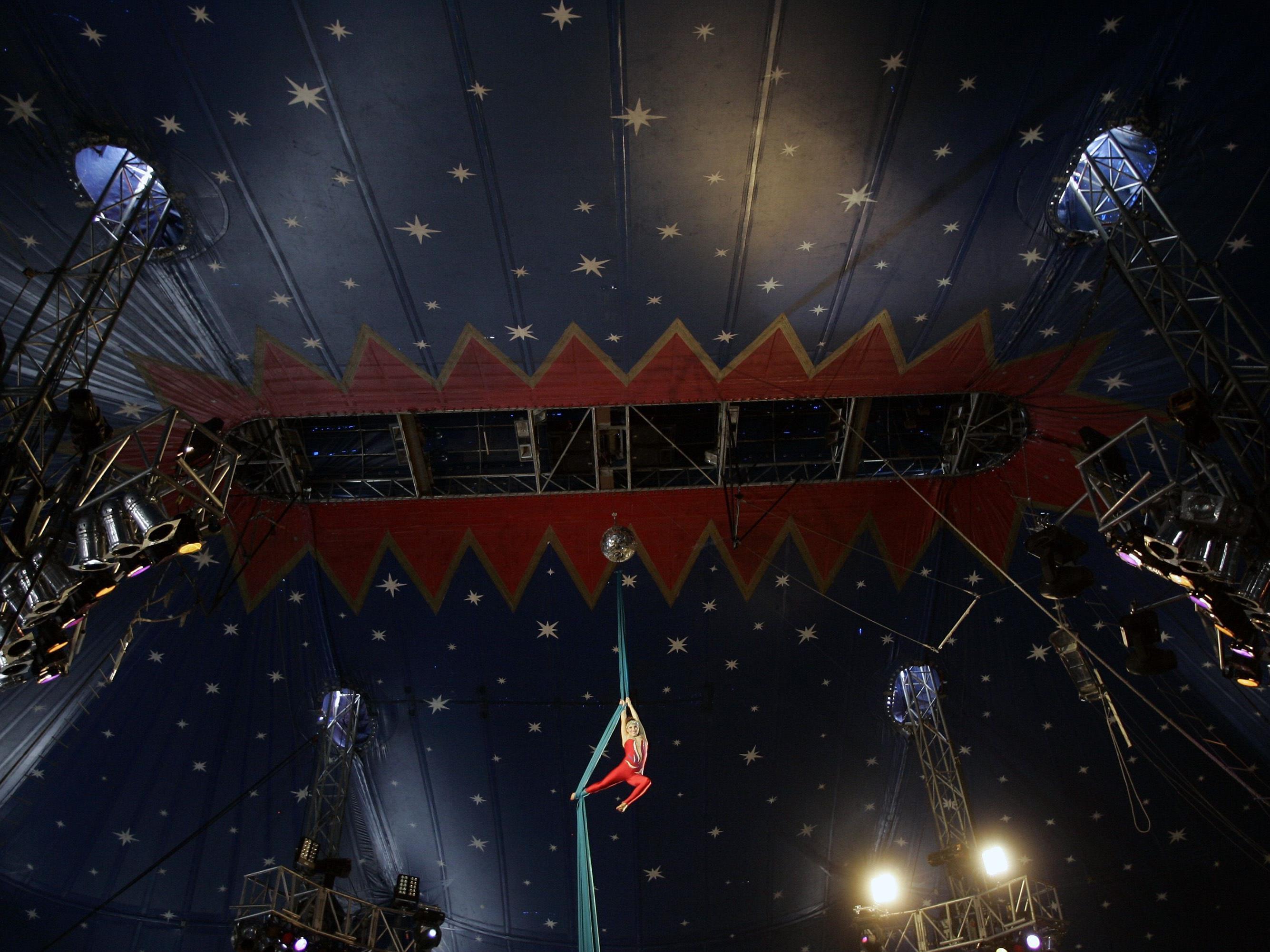 In diesem Video wird eine Zirkus-Katastrophe von Ende bis Anfang gezeigt.