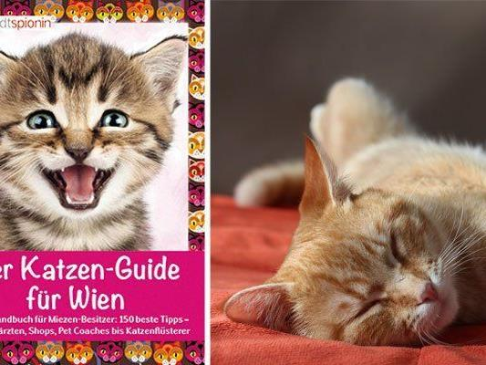 Ein neuer Guide vereint alles, was Katzen-Fans in Wien wissen wollen