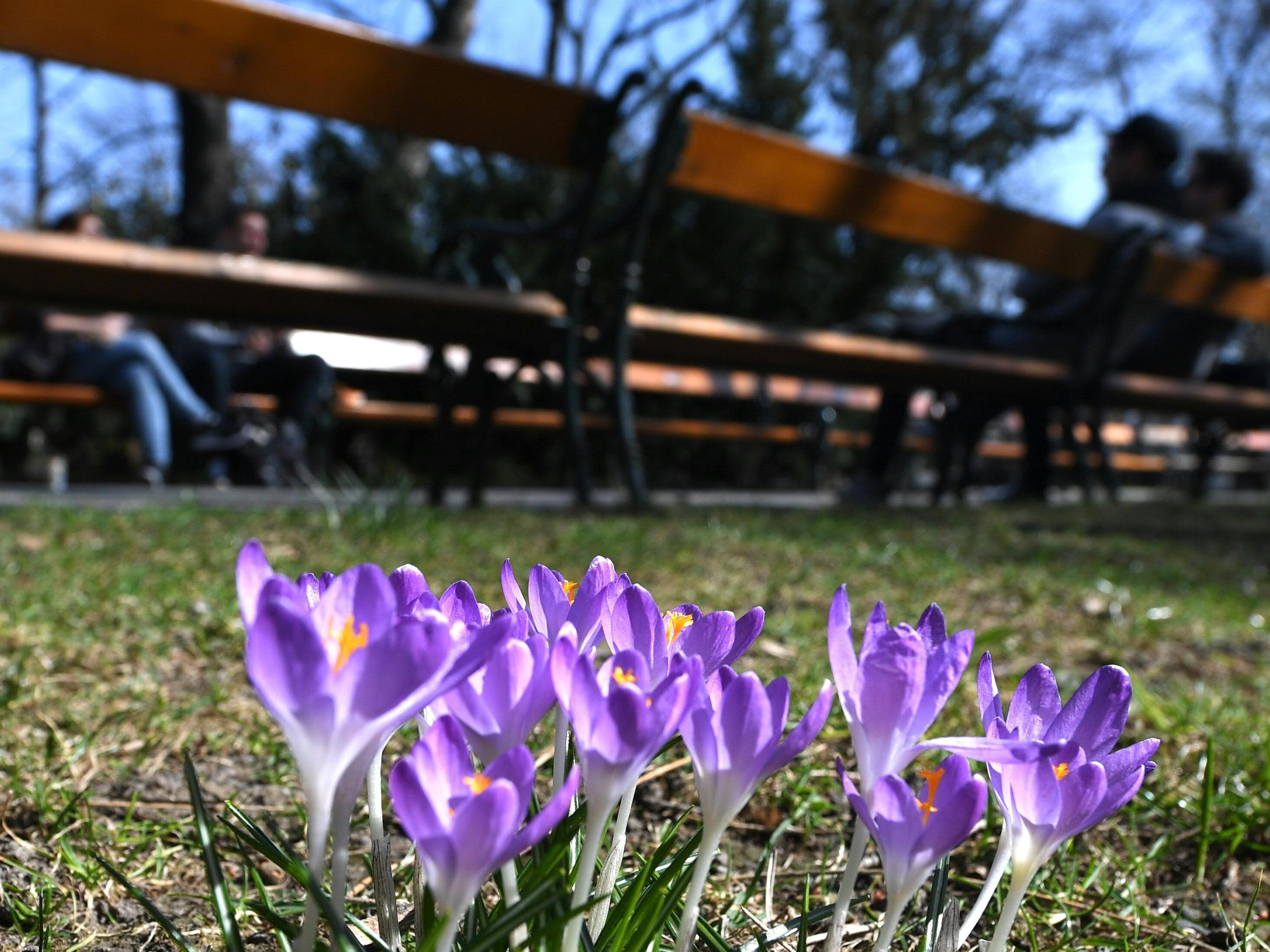 So wird das Wetter zum Frühlingsbeginn