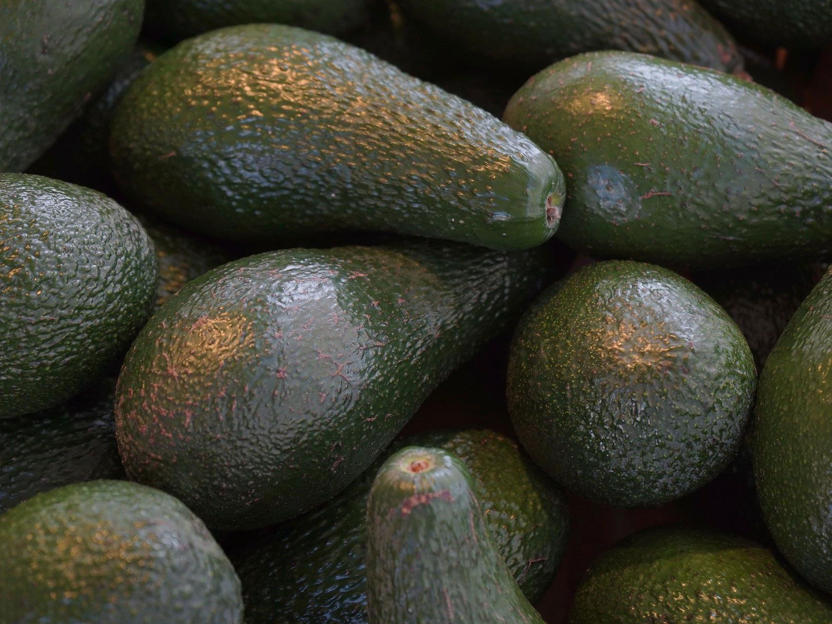 Bio-Avocados werden nun in ausgewählten Supermärkten mit Laser-Logo angeboten