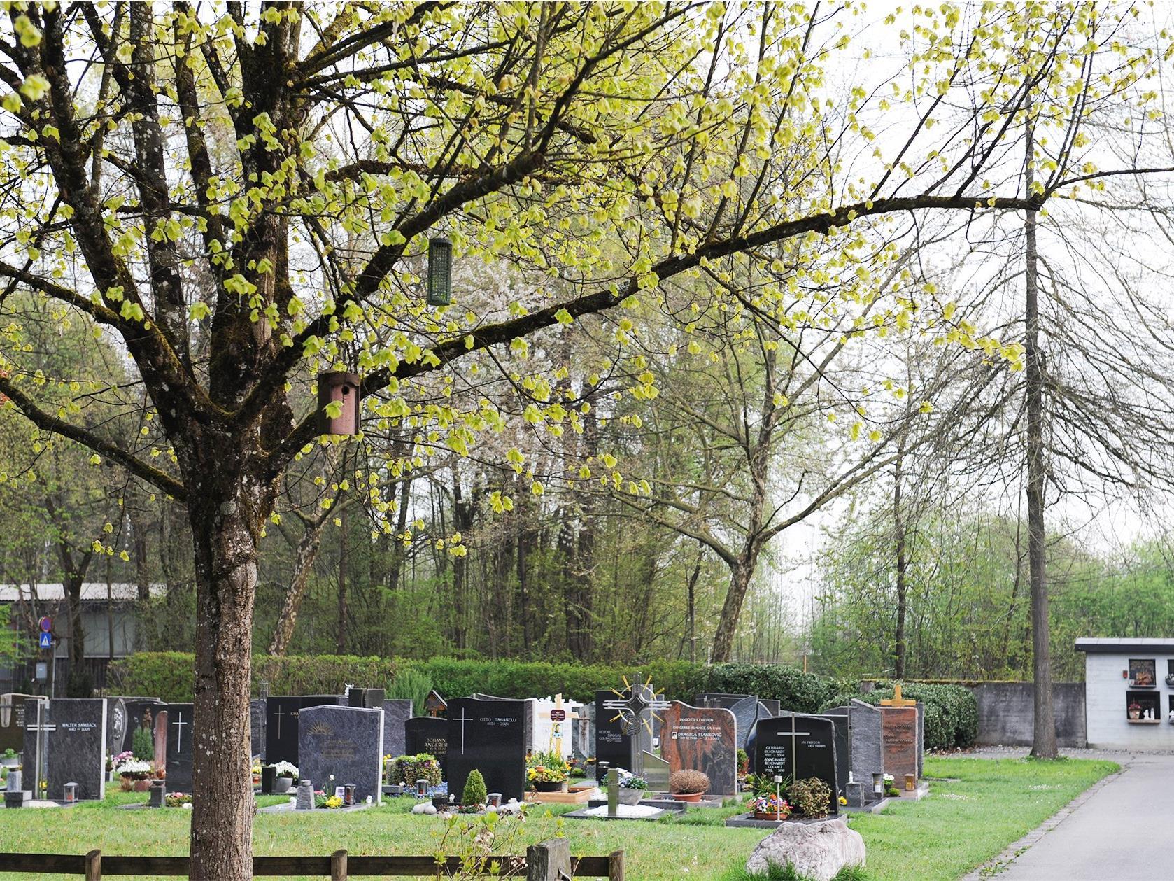 Die Stadt Dornbirn setzt ein Zeichen für die Umwelt.