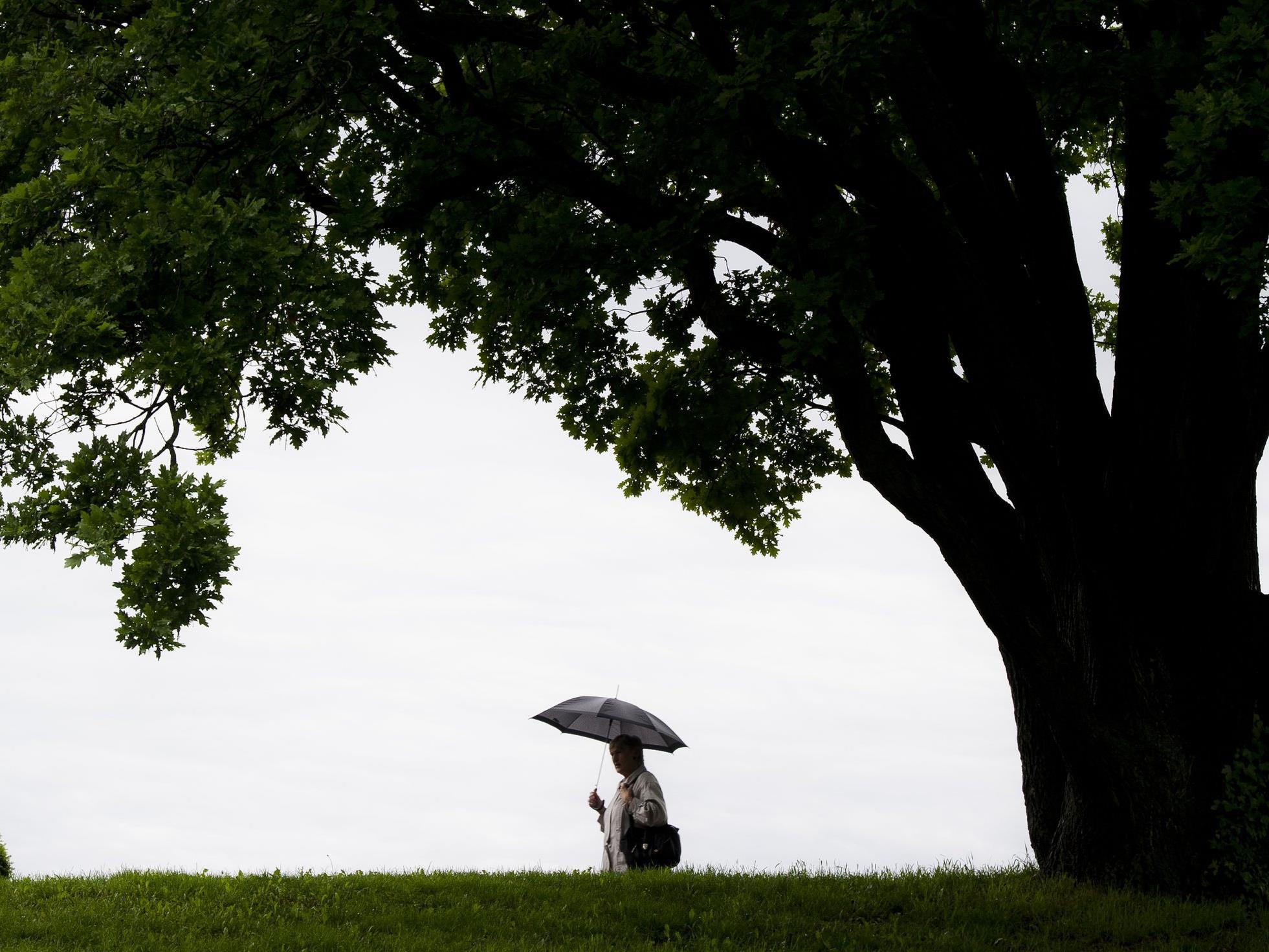 Wenig frühlingshaft: Die Woche beginnt mit häufigem Niederschlag.