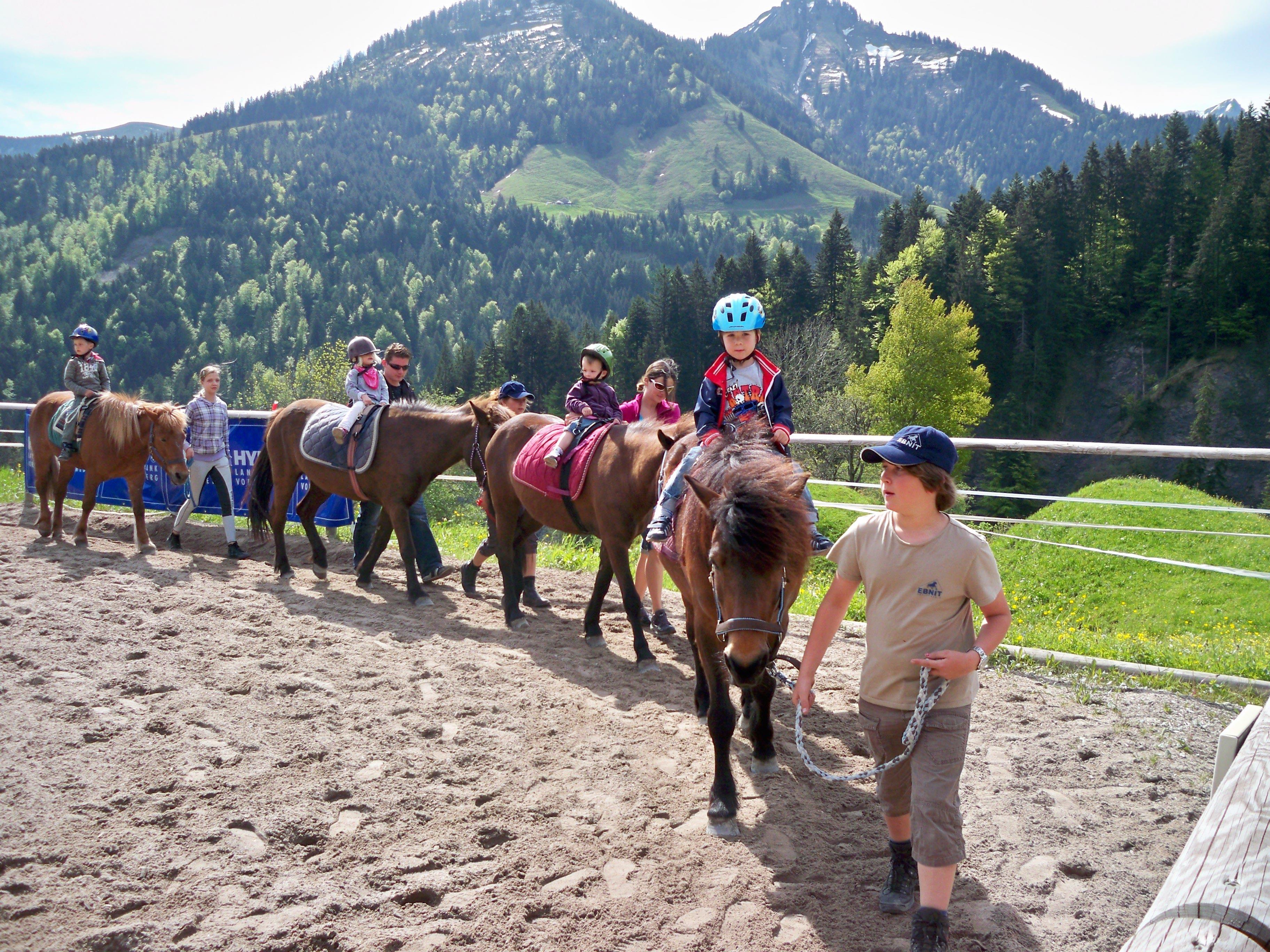 Die Pferdetage im Ebnit gehören immer zu den Highlights im ELKI-Jahr.