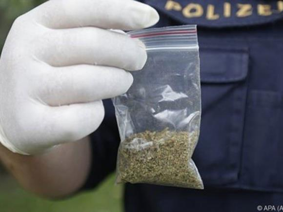 Die Polizisten stellten bei dem mutmaßlichen Drogendealer in Wien-Ottakring 11 Baggies Marihuana sicher.