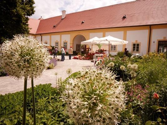 Auf Schloss Hof finden Ende Mai wieder die Frühlingsgartentage statt.