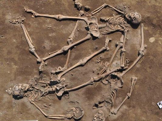 asfd Bei archäologischen Grabungen wurden Überreste der Schlacht bei Wagram entdeckt.