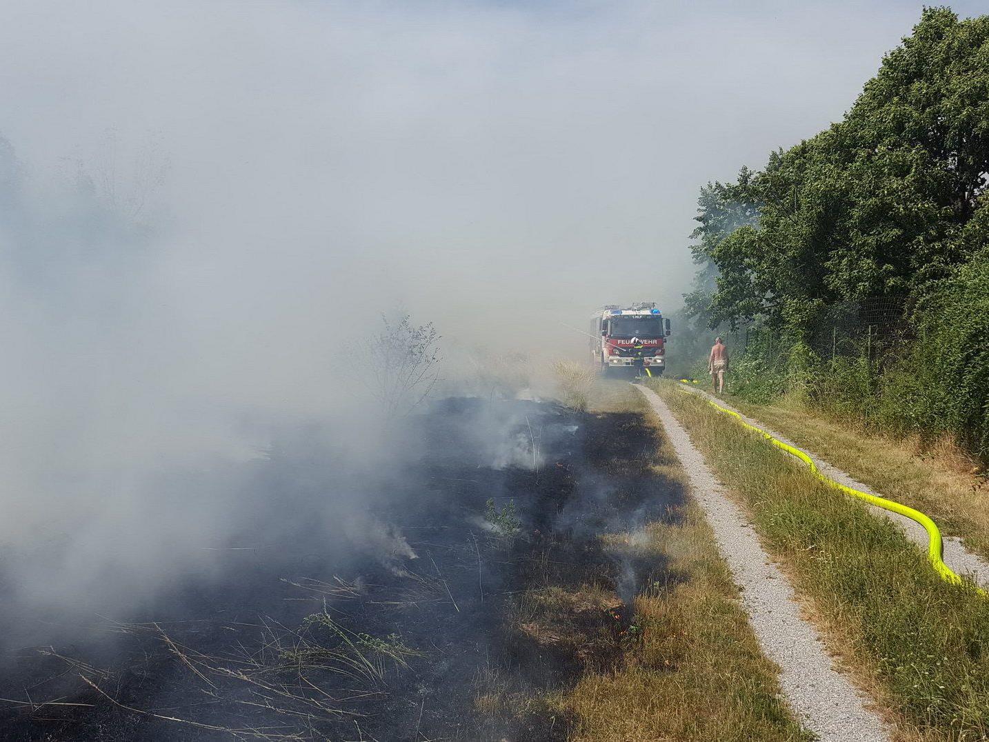 Wegen des Brandes in Wiener Neudorf kam es zu einer Betriebsstörung der Badner Bahn.