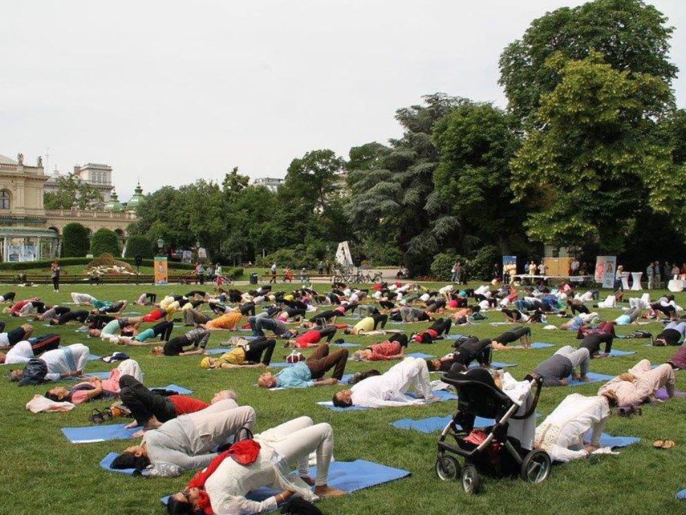 Beim Yoga-Event im Vorjahr im Wiener Stadtpark