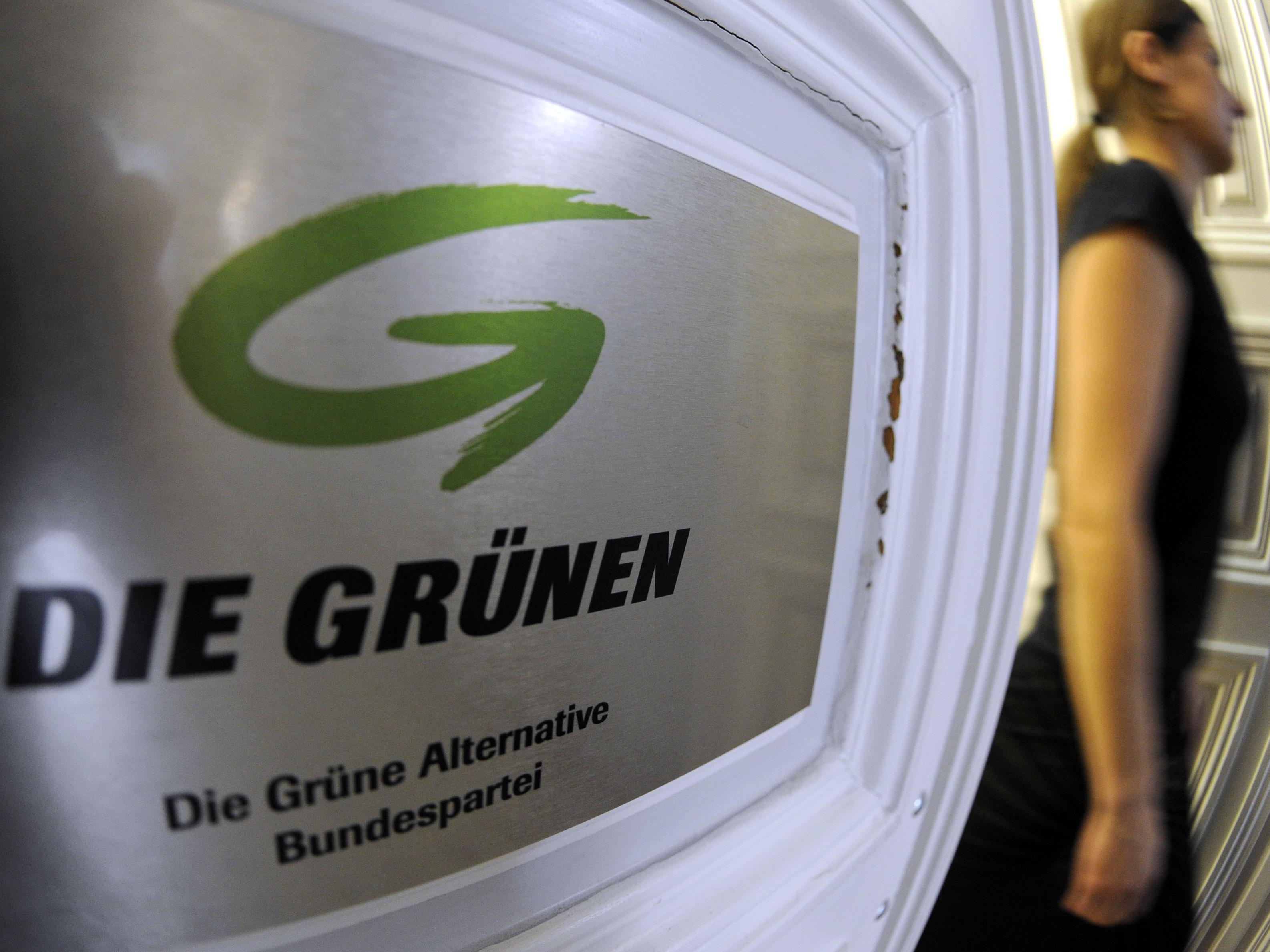 Die Grünen haben ihren profiliertesten Neueinsteiger präsentiert: Anwalt Bürstmayr.
