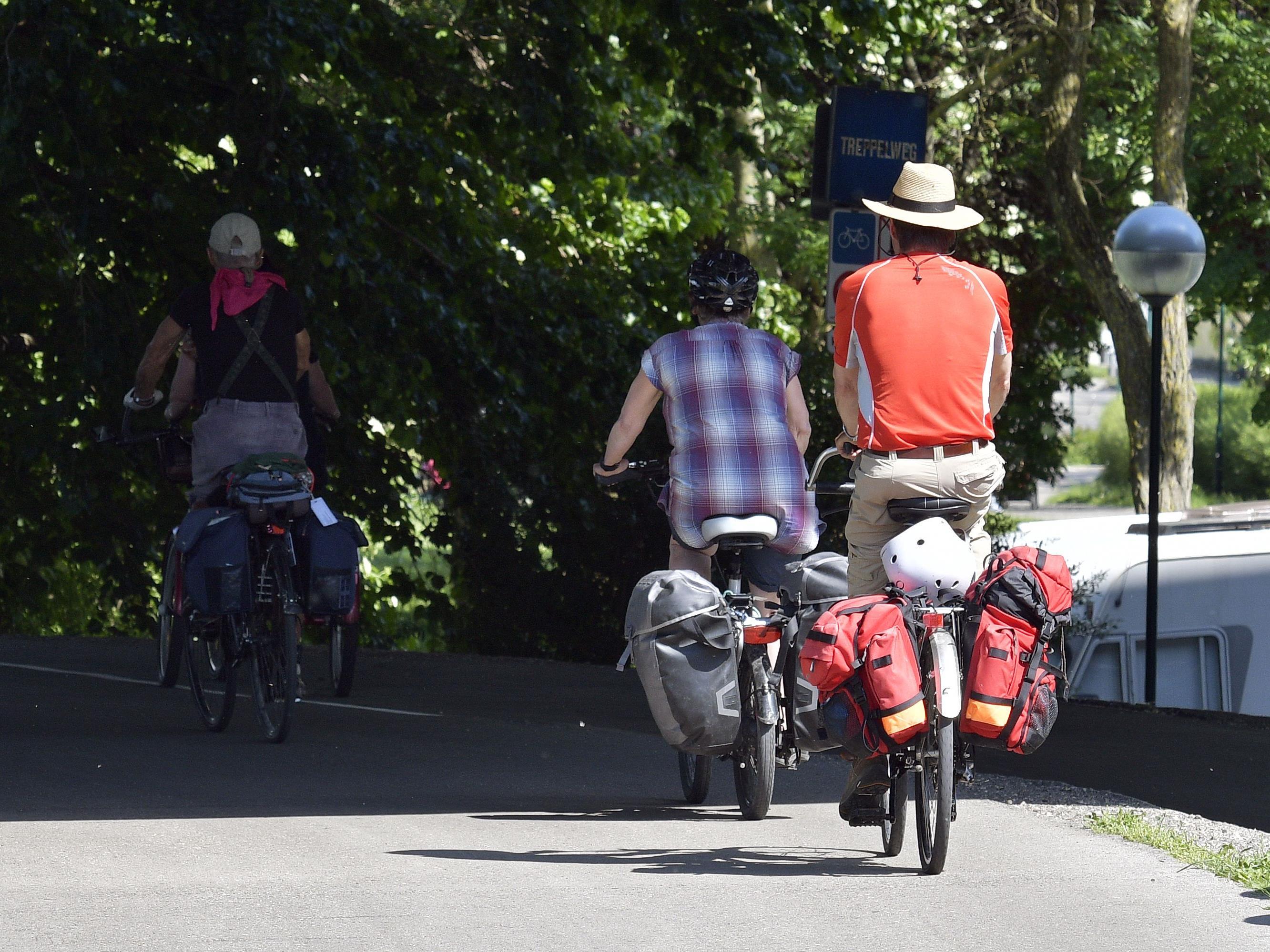 Rekordwert im Juni: Noch nie waren so viele Wiener mit dem Rad unterwegs