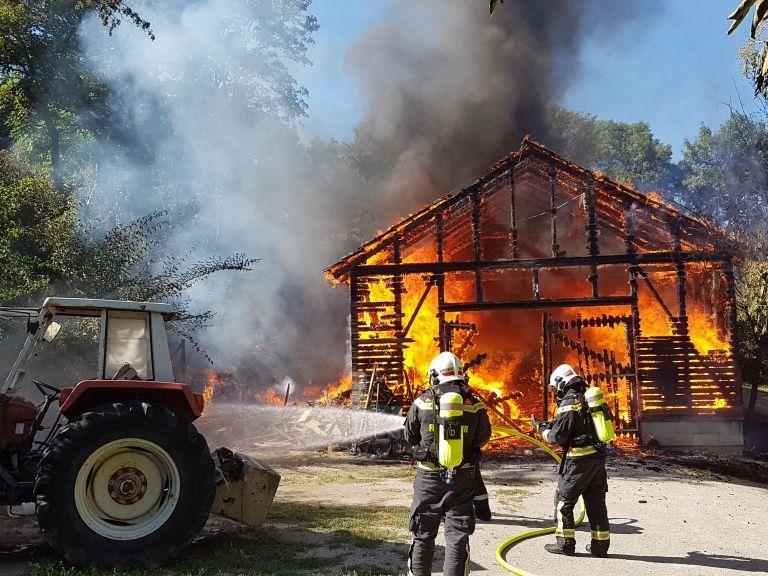 Bei einem Brand am Cobenzl hatte die Feuerwehr alle Hände voll zu tun