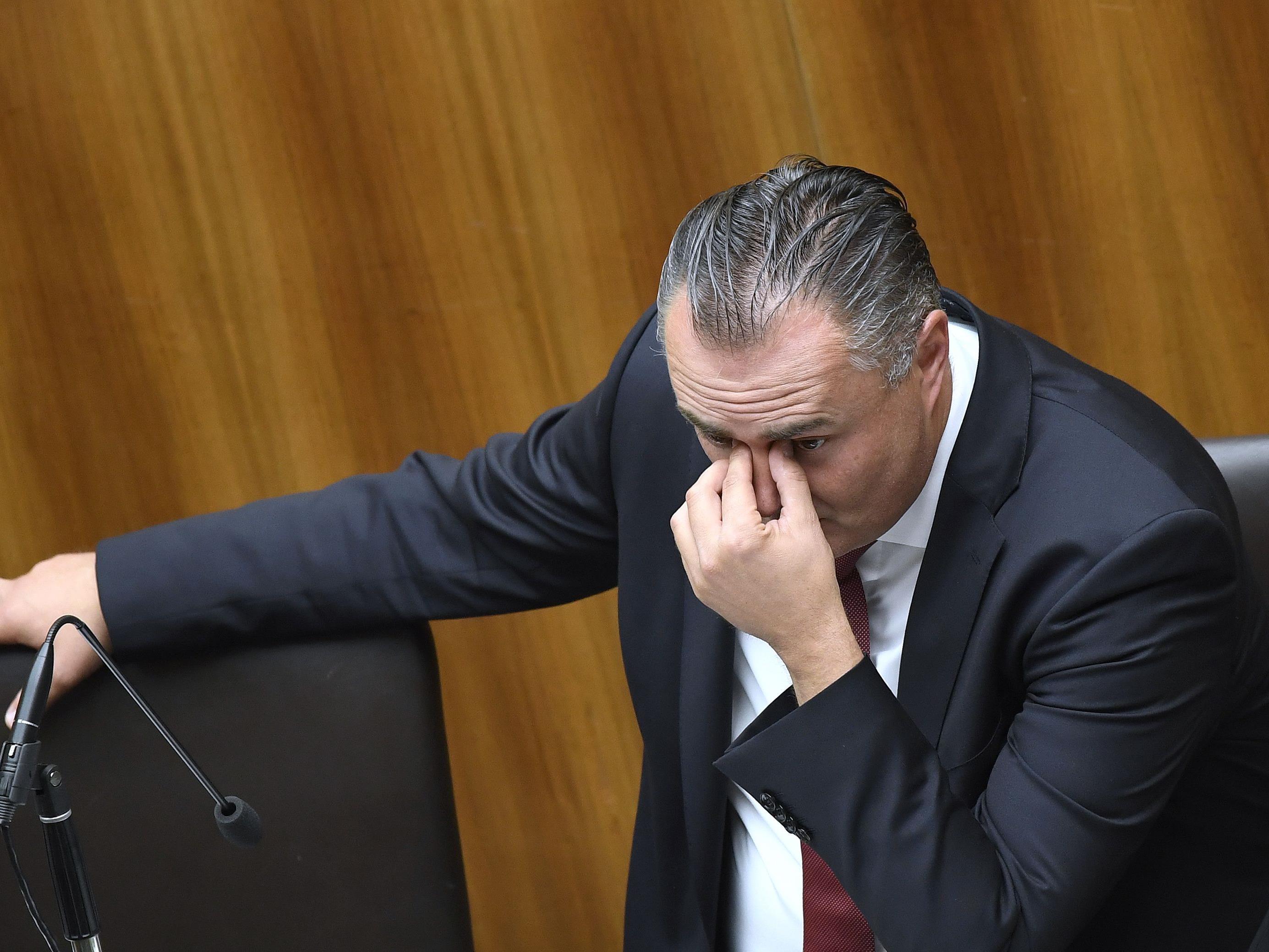 SPÖ-Verteidigungsminister Doskozil zur Causa Hübner