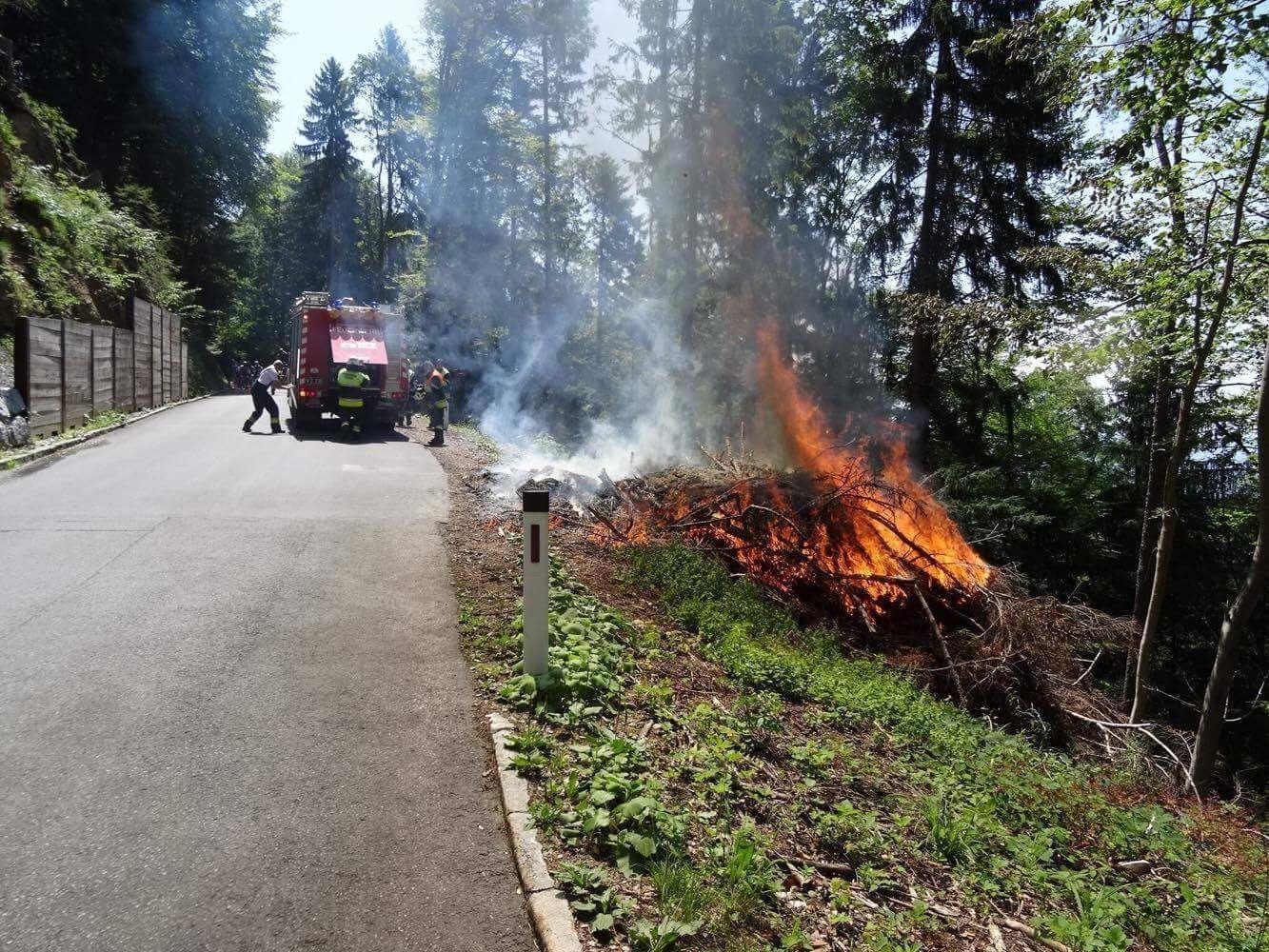 Feuerwehr schließt Brandstiftung nicht aus.