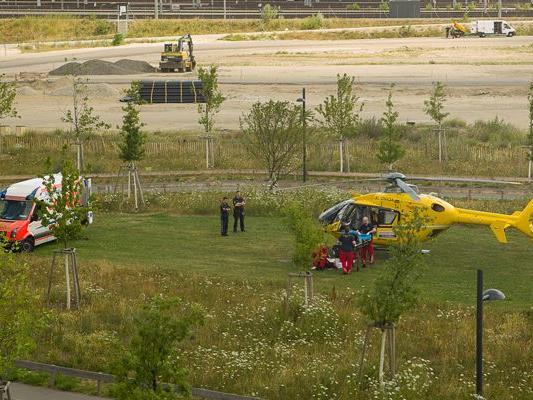 Ein Mann wurde mit dem Notarzthubschrauber ins Krankenhaus geflogen.