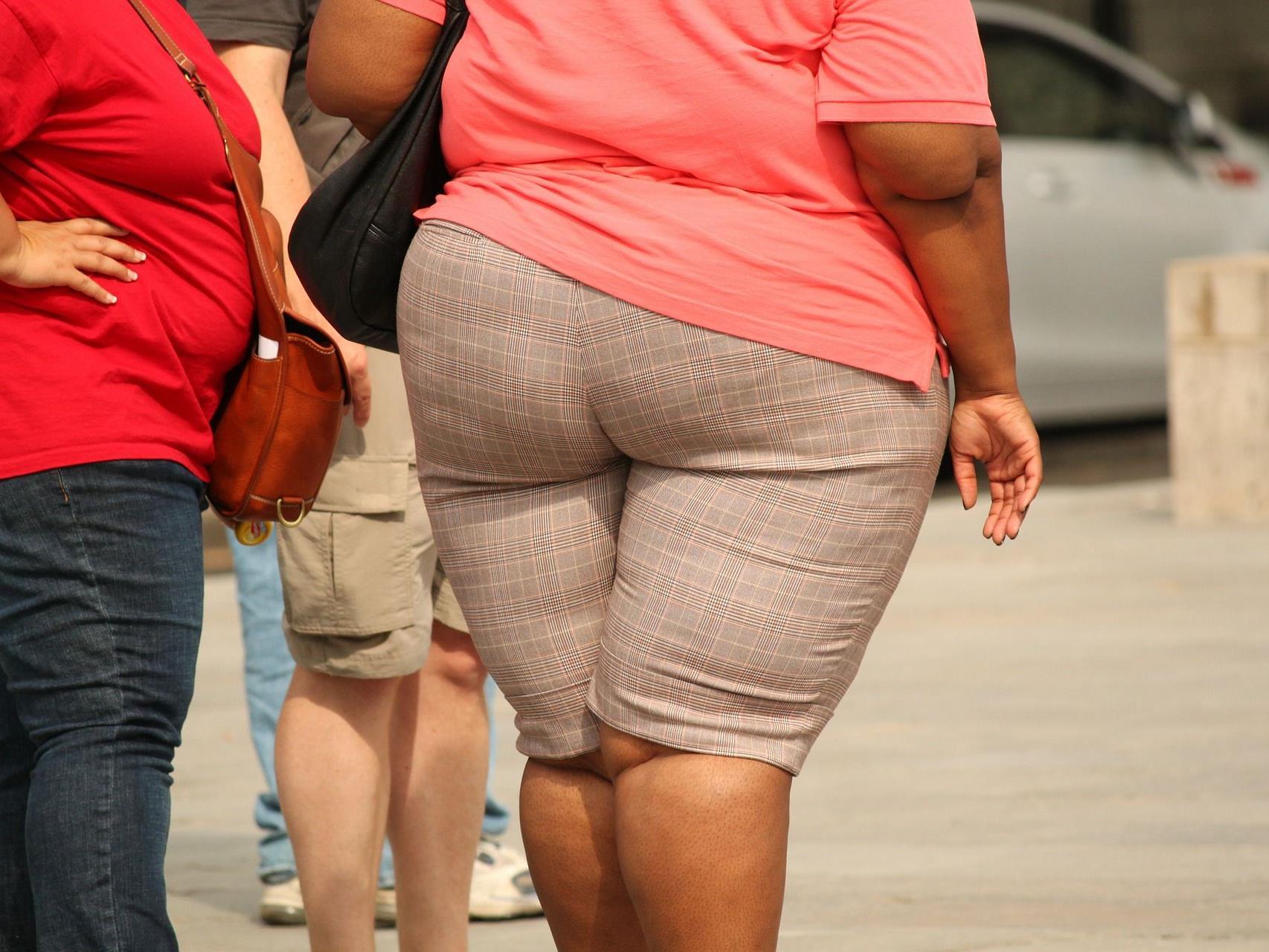 Laut Forschern macht Hausstaub übergewichtig.