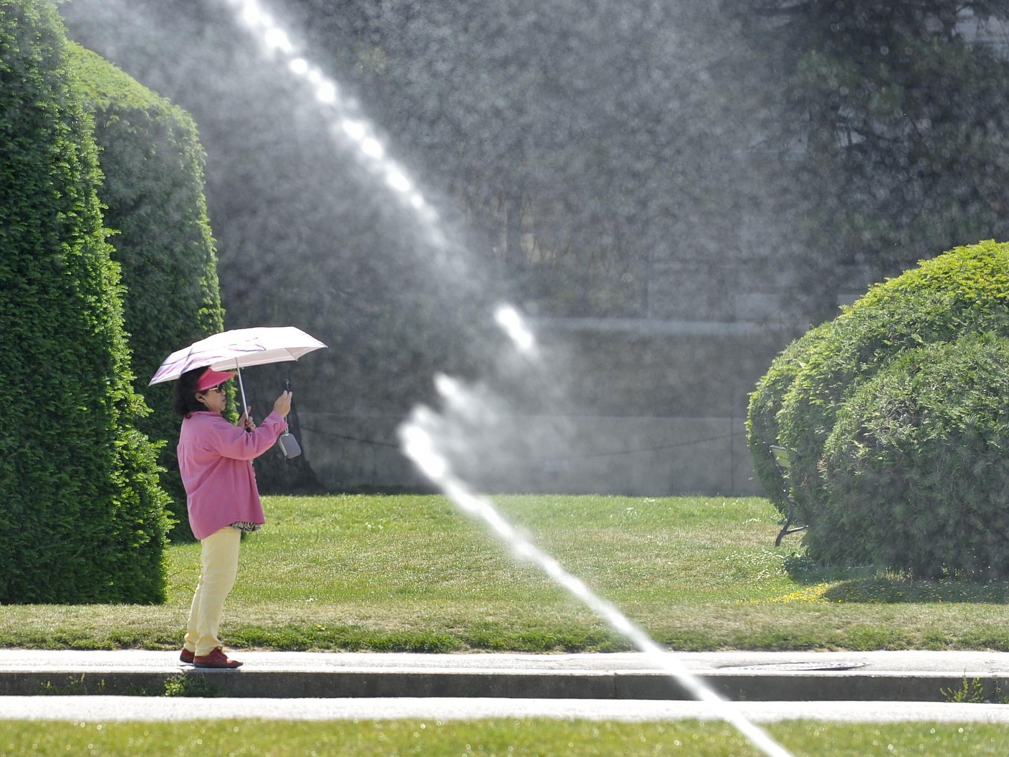 In Wien sollte es während der nächsten Tage großteils angenehm sommerlich bleiben.