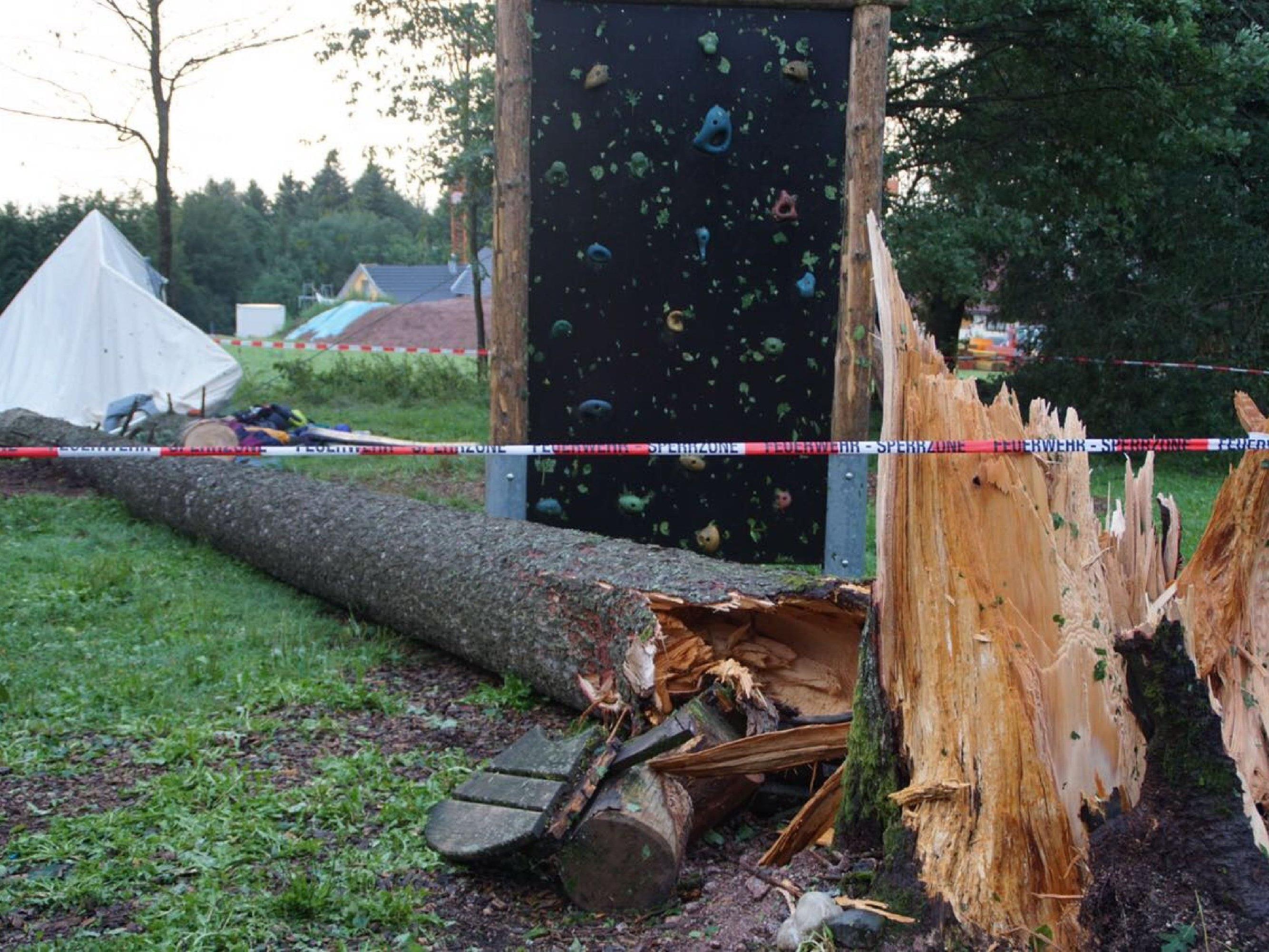 Ein 30 Meter hoher Baum stürzte auf das Zelt.