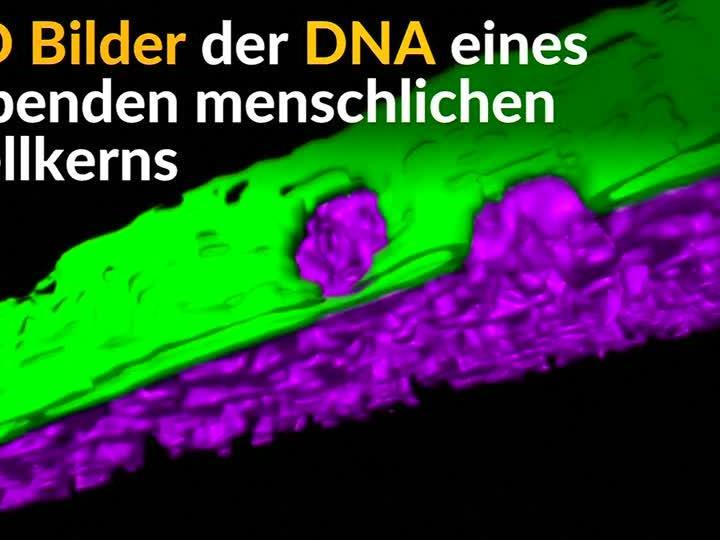 3D-Visualisierung von lebender menschlicher DNA.