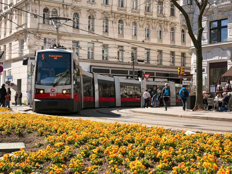 Am Freitag stürzte in Wien eine Baumulde auf die Straßenbahnlinie 5.