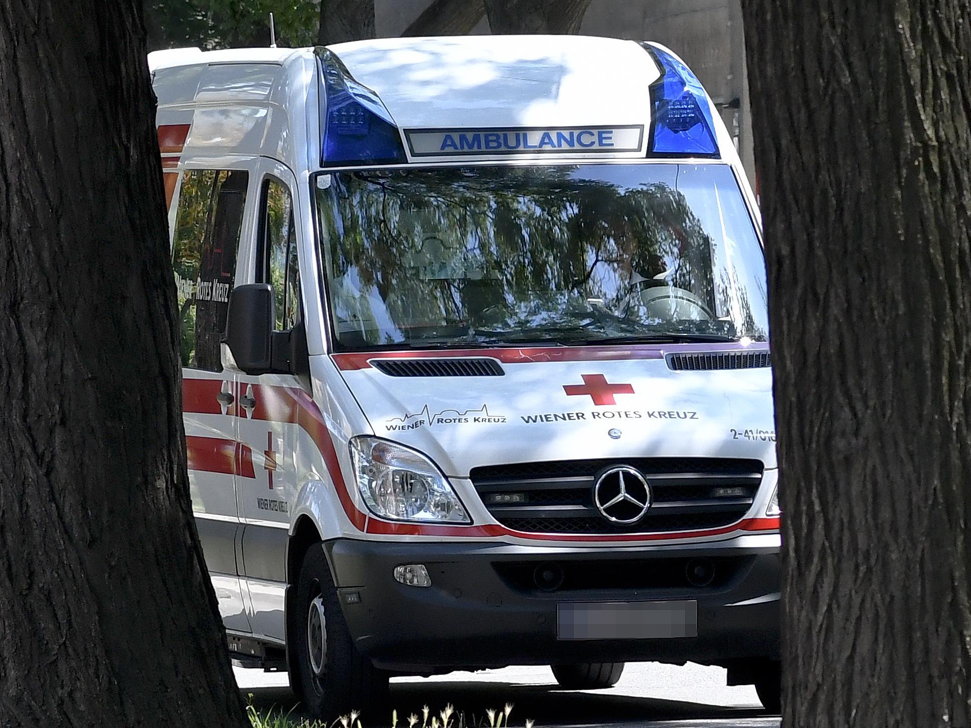 Die 29-Jährige sowie die drei Kinder wurden ins Spital gebracht.